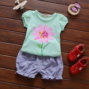 Picture of Cuddly Flower Tee Sleeve with Shorts Girl Set