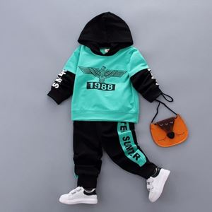 Picture of Eagle Boy Hoodie Longsleeve Shirt and Pant Two-Piece Set